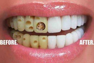 درمان و زیبایی دندانهای شما، تخصص ماست.
