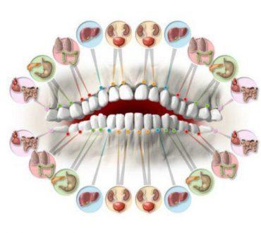 ارتباط دنداندرد با اختلال در عملکرد اندامهای داخلی بدن
